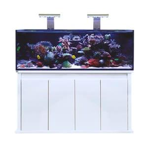 D-D Reef Pro 1500S - Gloss White