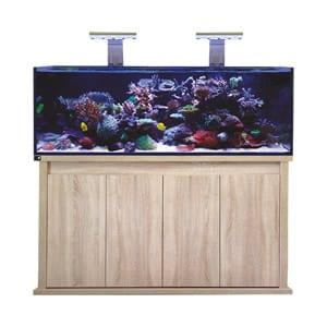 D-D Reef Pro 1500S Platinum Oak