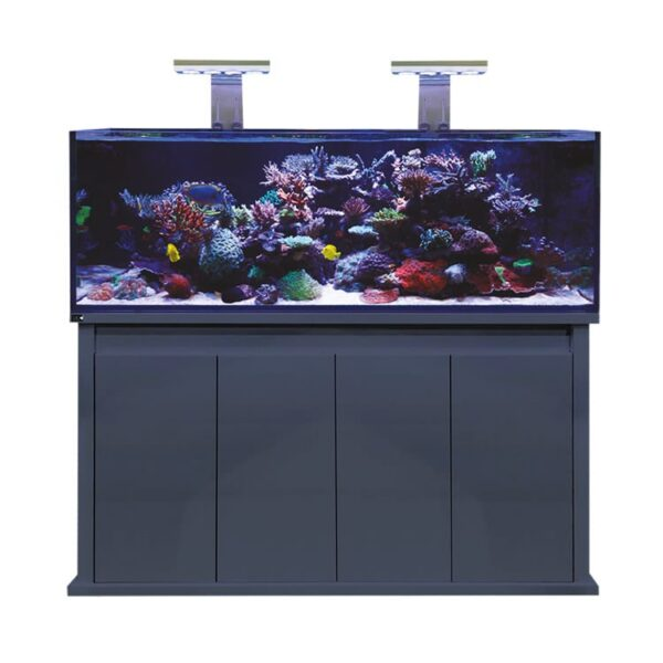 D-D Reef Pro 1500S Gloss Anthracite