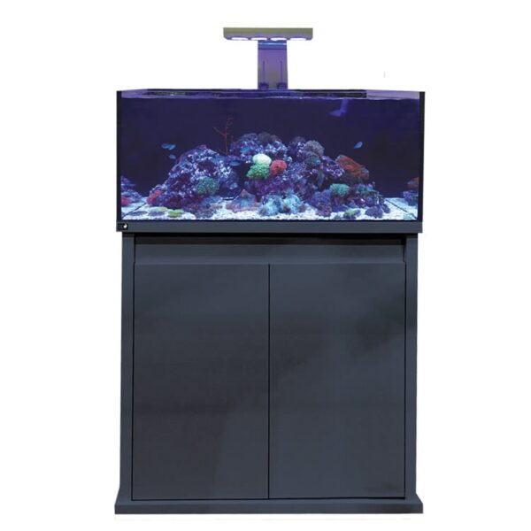 D-D Reef Pro 900 Gloss Anthracite