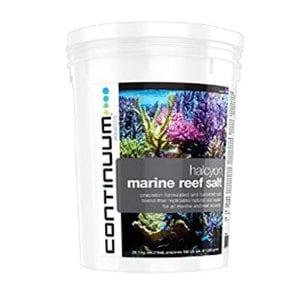 Continuum Halcyon Marine Reef Salt