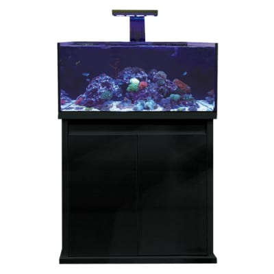 d-d reef pro 900 gloss black aquarium