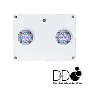 D-D Hydra 32HD Light