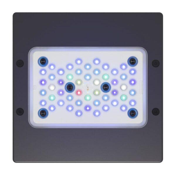Ecotech Radion XR15w G5 Blue LED Lighting