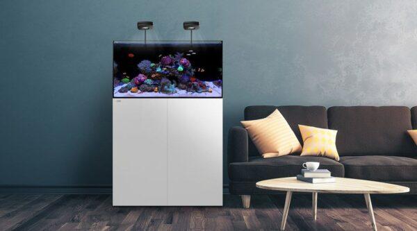 Waterbox AIO 50.3 Aquarium