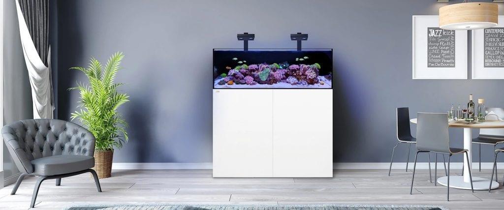 waterbox-aquarium-in-room