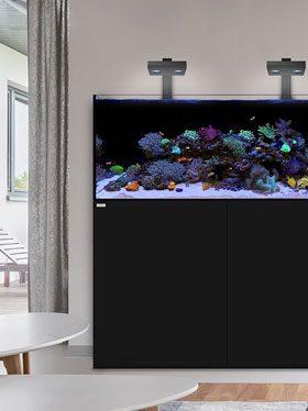 waterbox aquariuums
