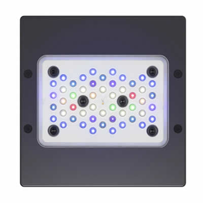 Ecotech Radion XR15w G5 Blue LED Lighting EcoTech Radion