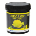 Algae Flake with Garlic
