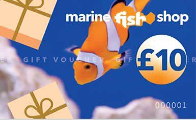 Marine Fish Shop Gift Voucher £10.00 Gift Vouchers