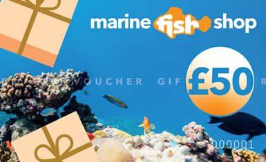 Marine Fish Shop Gift Voucher £50.00 Gift Vouchers