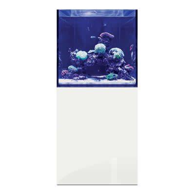 D-D Aqua-Pro Reef Cube 600 – Gloss White Aquarium